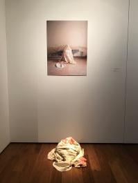 Mostra dei finalisti dell'Arteam Cup 2020 - sezione fotografia. Artista Veronica Benedetti.