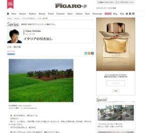 Articolo_Yoko1.jpg