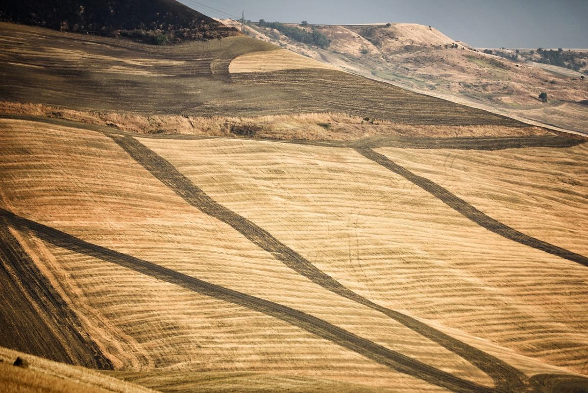 Masseria Recupa Scardinale | Gravina in Puglia